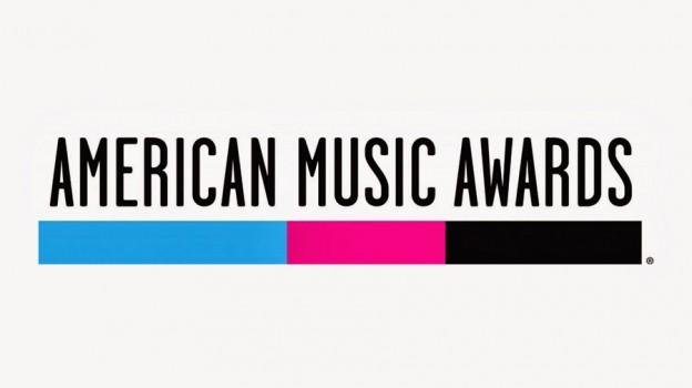 41st American Music Awards 2013